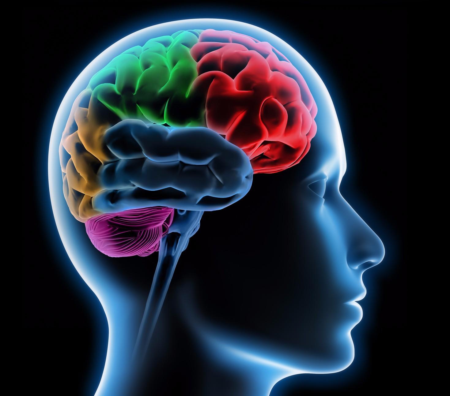 7th CROATIAN NEUROLOGICAL CONGRESS